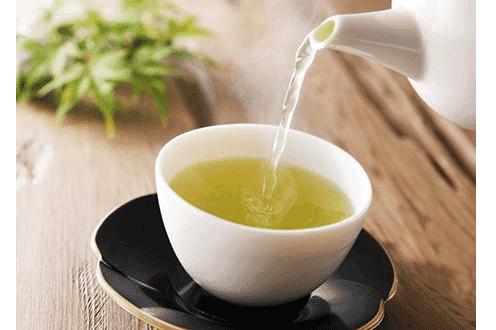 Brewing Green Coffee